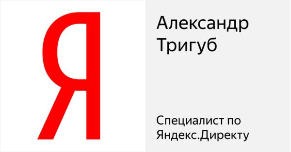 Специалист по Яндекс Директу Александра Тригуб