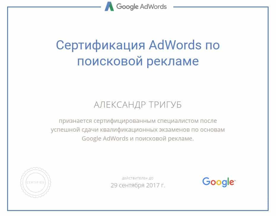 Сертификат Александра Тригуб по AdWords по поисковой рекламе