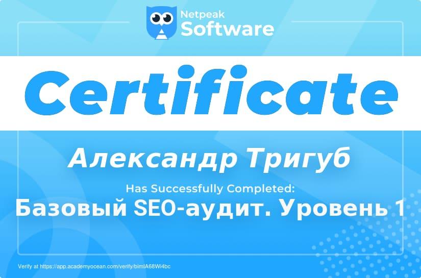 Сертификат Александра Тригуб по базовому SEO-аудиту - Уровень 1