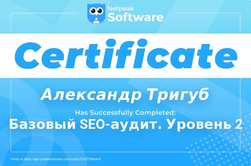Сертификат Александра Тригуб по базовому SEO-аудиту - Уровень 2